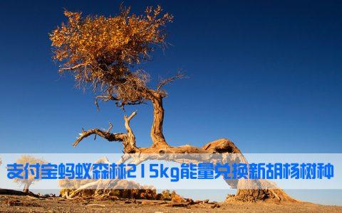 支付宝蚂蚁森林215kg能量兑换新胡杨树种